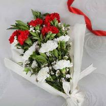 Bunch Of 5 Red & 5 White Carnations