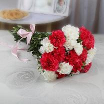 Bunch Of Red And White Carnations